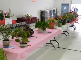 Hill City Evergreen Garden Club